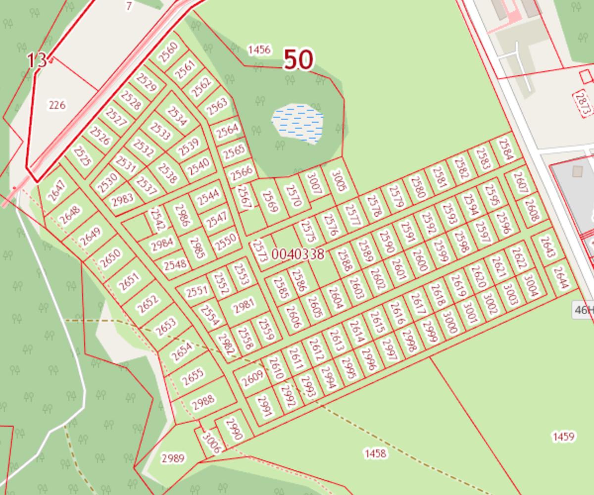 Кадастровая карта Новое Тишково